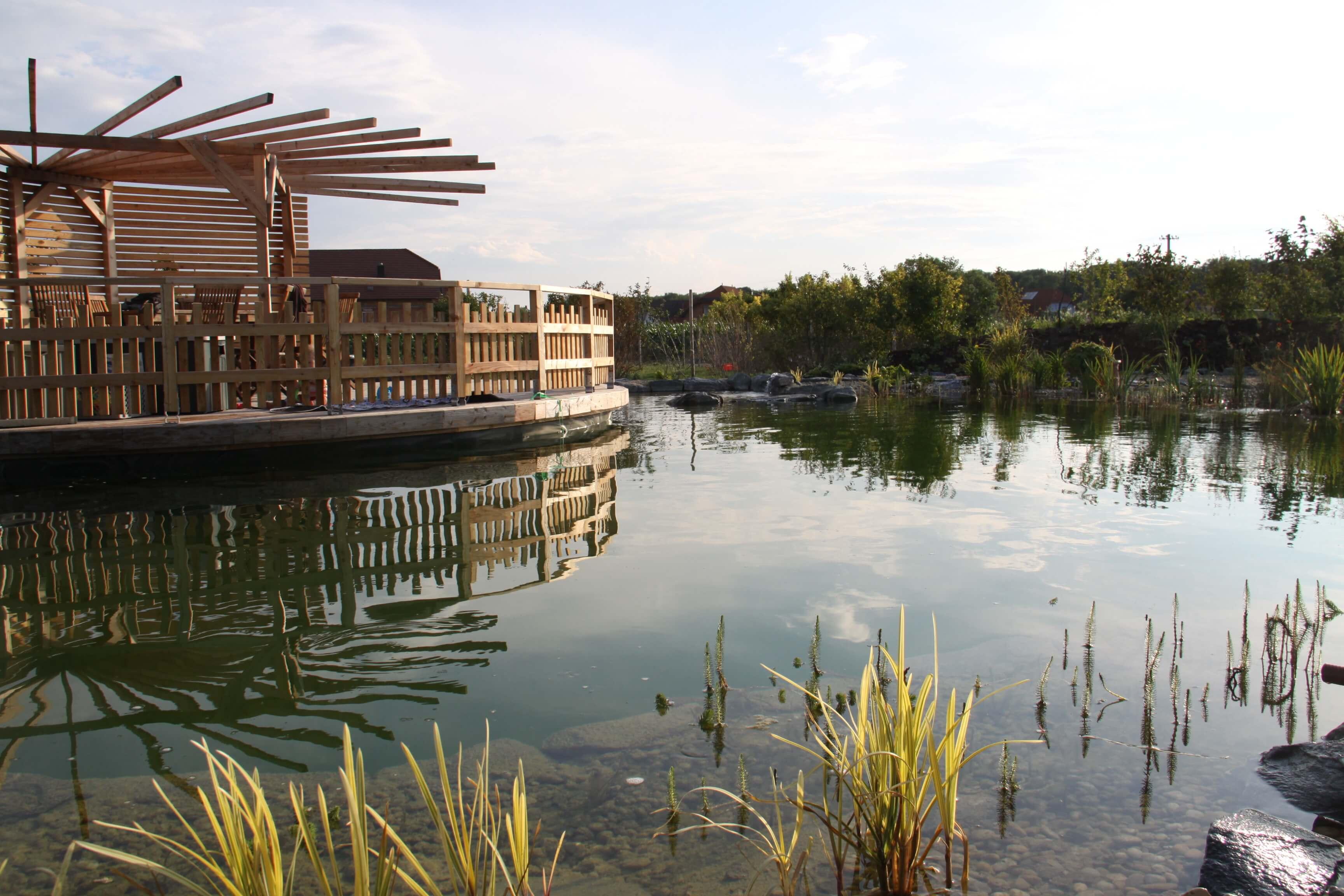 Teich & Pool
