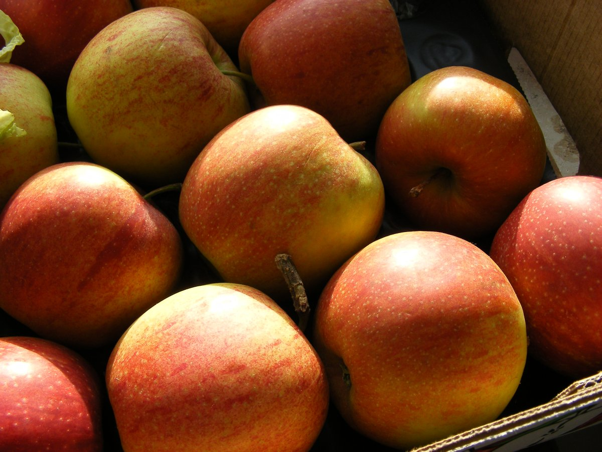 Äppelkiste