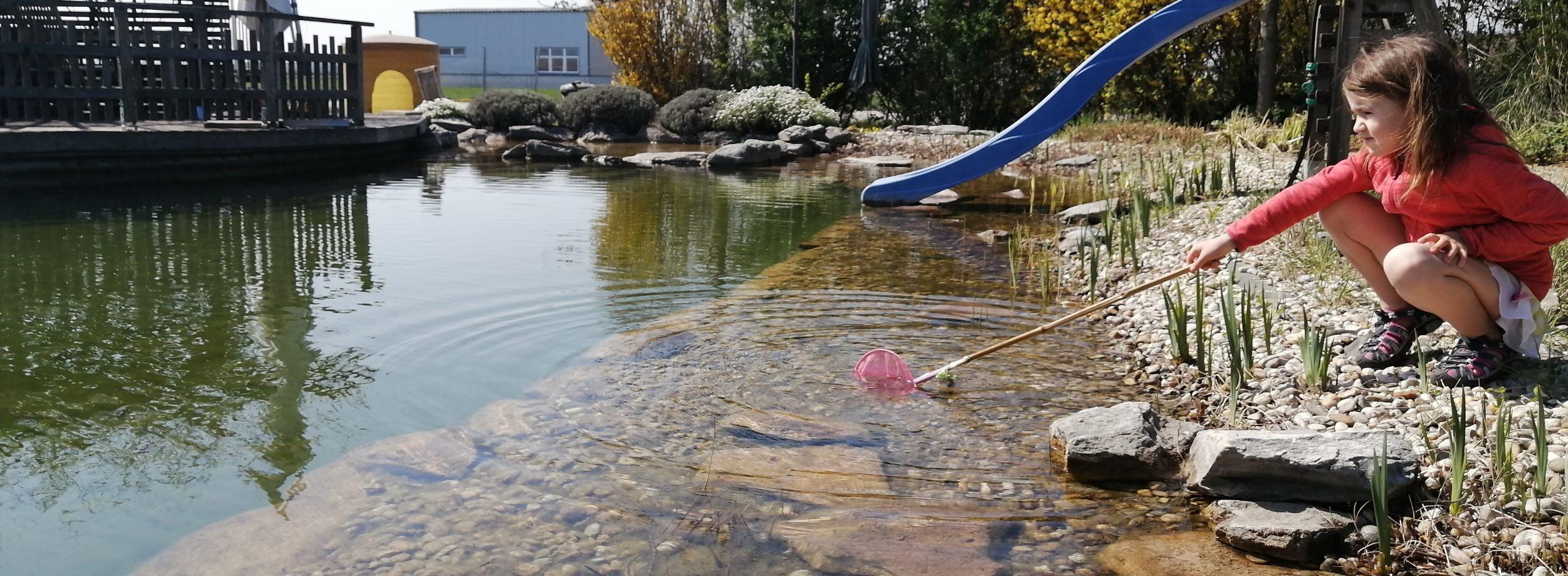 Schwimmteich – Erholungsraum für Mensch und Tier