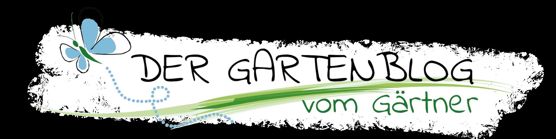 Logo-Blog-schwarz+HG